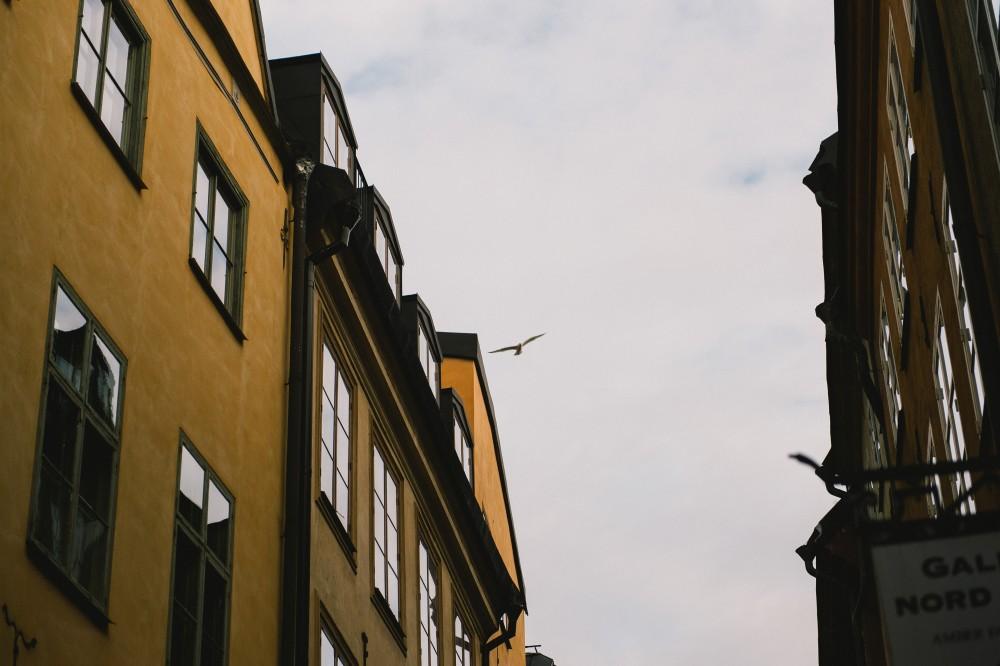 stockholm+engagement_276
